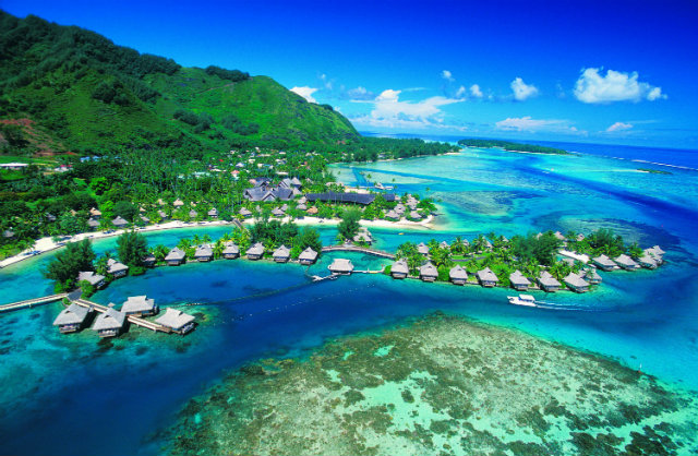 Best Design Guides Sunny Holidays during Frosty Winter tahiti  Sunny Holidays during Frosty Winter Best Design Guides Sunny Holidays during Frosty Winter tahiti