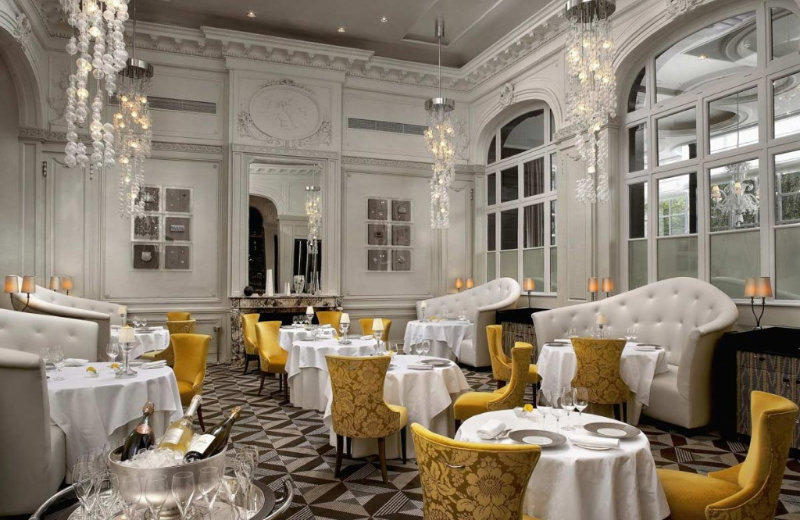 luxury restaurants 5 Luxury Restaurants to Visit During Your Next Trip to Paris canva photo editor 8