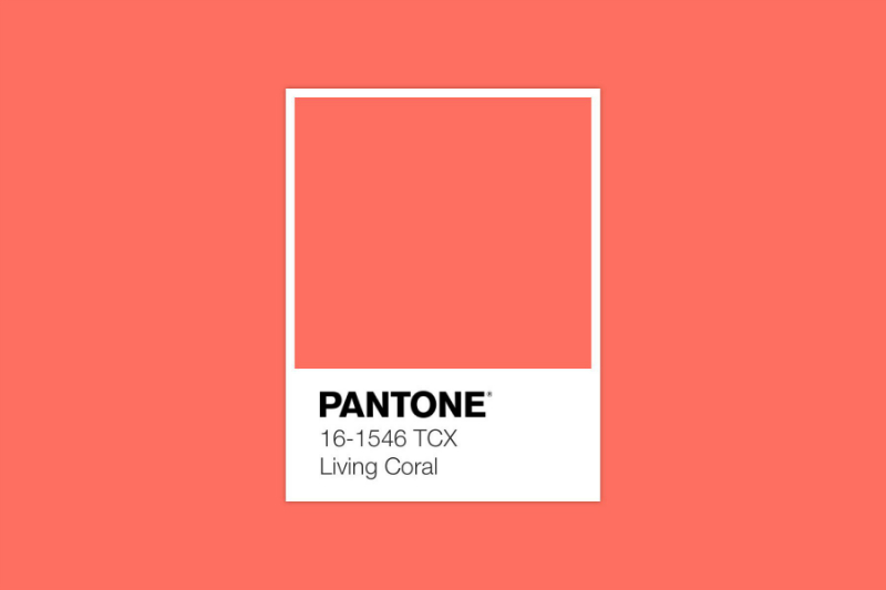 Pantone Just Revealed Living Coral As The Colour of The Year 2019 Colour of The Year 2019 Pantone Just Revealed Living Coral As The Colour of The Year 2019 Pantone Announces Living Coral As The Colour of The Year 2019 4