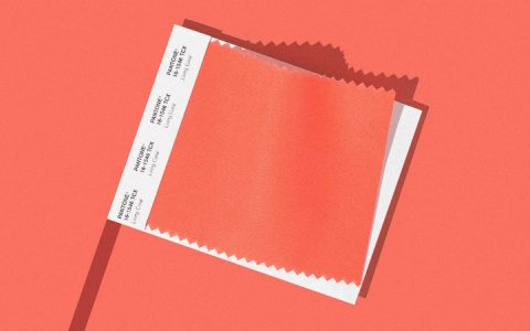 Pantone Just Revealed Living Coral As The Colour of The Year 2019 Colour of The Year 2019 Pantone Just Revealed Living Coral As The Colour of The Year 2019 Pantone Announces Living Coral As The Colour of The Year 2019 5 480x300