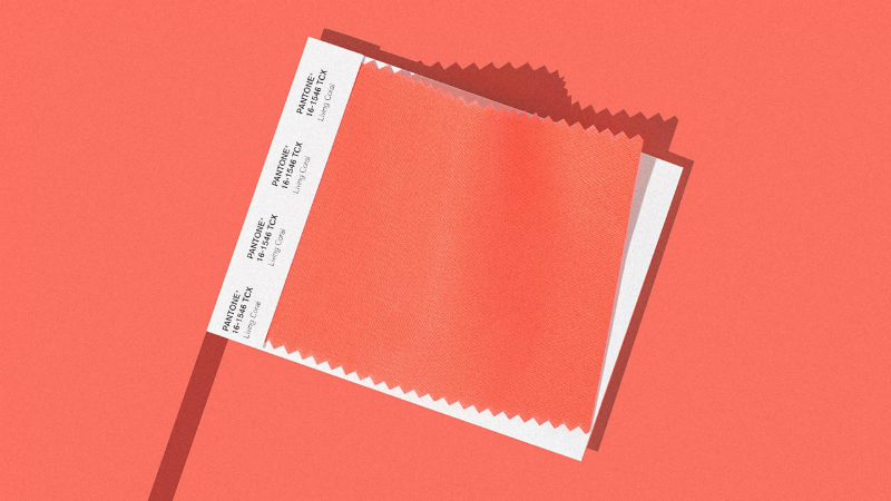 Pantone Just Revealed Living Coral As The Colour of The Year 2019 Colour of The Year 2019 Pantone Just Revealed Living Coral As The Colour of The Year 2019 Pantone Announces Living Coral As The Colour of The Year 2019 5